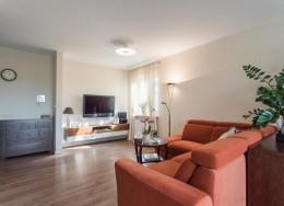 Apartament Anin